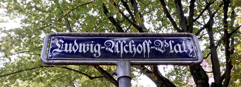 Auch der Name des Pathologen Ludwig Aschoff (1866-1942) steht auf der Liste der Kommission.