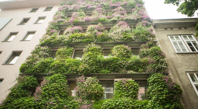 Bäume auf die Dächer – Wälder in die Stadt!