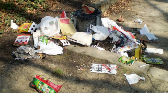 Müllsünden konsequenter ahnden