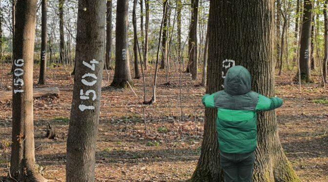 Unterstützung der Baumpatenschaften in Dietenbach