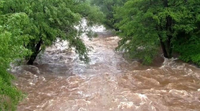 Klimaneutralität nicht ohne Schutz des Überschwemmungsgebiets Dietenbach